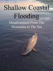 Shallow Coastal Flooding