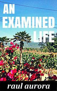 An Examined Life