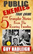Public Enemies: 5 True Crime Gangster Stories from the Roaring Twenties