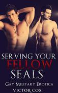 Serving Your Fellow SEALs: Gay Military Erotica