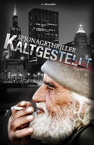 Kaltgestellt: Spionagethriller