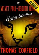 Hotel Scenes From the Velvet Paw of Asquith Novels