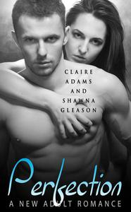 Perfection (The Perfection Romance Series - Book #1)