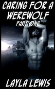 Caring for a Werewolf, Part One (a knotting romance novella)