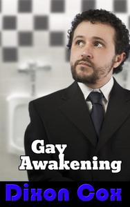 Gay Awakening