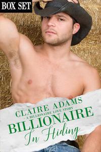 Billionaire In Hiding