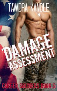 Damage Assessment