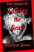 Taming the Beast (Episode III)