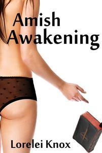 Amish Awakening