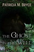 The Ghost in the Well
