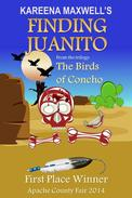 Finding Juanito: Native American Fiction