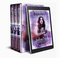 Indigo Court Books, 4-6: Night Vision, Night's End, Night