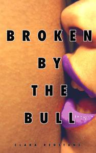 Broken by the Bull