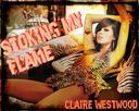 Stoking My Flame (Pyro, Virgin, Self Pleasure erotica)