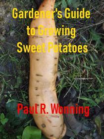 Gardener's Guide to Growing Sweet Potatoes