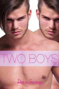 Two Boys (MFM Menage Erotica)