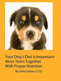 Your Dog's Diet is Important: More Years Together With Proper Nutrition