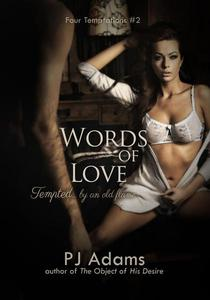 Words of Love (Tempted by an old flame - an erotic romance)