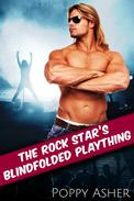 The Rock Star's Blindfolded Plaything