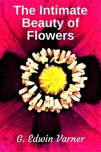 The Intimate Beauty of Flowers