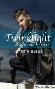 Twinklight - Bis(s) ins Herz: Gay Erotik Romance