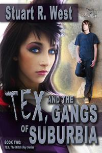 Tex And The Gangs Of Suburbia