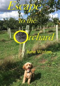 Escape to the Orchard