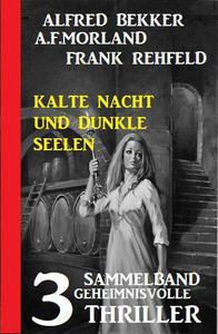Kalte Nacht und dunkle Seelen: Sammelband 3 geheimnisvolle Thriller