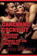 Gangbang Cockslut - A 5 Story Gangbang Collection