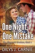 One Night, One Mistake