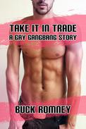 Take it in Trade - A Gay Gangbang Story