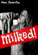 Milked! (Human Cow Lactation Erotica)