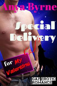 Special Delivery for My Valentine