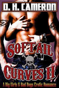 Softail Curves II (A Big Girls & Bad Boys Erotic Romance)