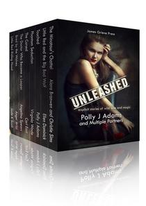 Unleashed: explicit stories of wild love and magic