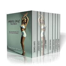 Feeling The Heat: An Anthology of 8 Steamy Stories