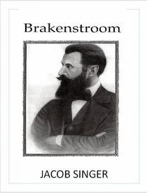 Brakenstroom