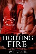Fighting Fire #2: Burn