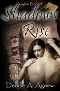 Shadows Rise (Asylum Trilogy Book 2)