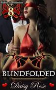 Public Submission 8: Blindfolded