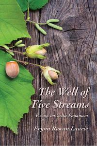 The Well of Five Streams Essays on Celtic Paganism
