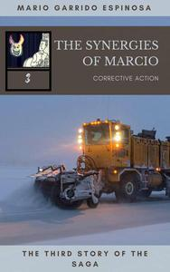 The synergies of Marcio 3: Corrective actions
