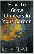 How To Grow Climbers In Your Garden