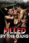 Filled by the Gang Book 3 - Hot Menage Gangbang Erotica