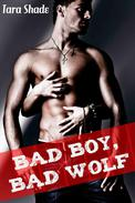 Bad Boy, Bad Wolf (Paranormal Alpha Male BBW Erotic Romance)