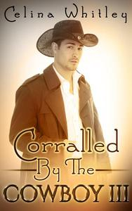 Corralled by the Cowboy: 3