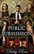 Public Submission 7 - 12