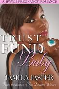 Trust Fund Baby: A BWWM Pregnancy Romance Novel