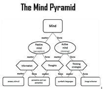 The Mind Pyramid