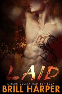 Laid: A Blue Collar Bad Boys Book